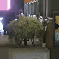 heinää hevosille pirkanmaa